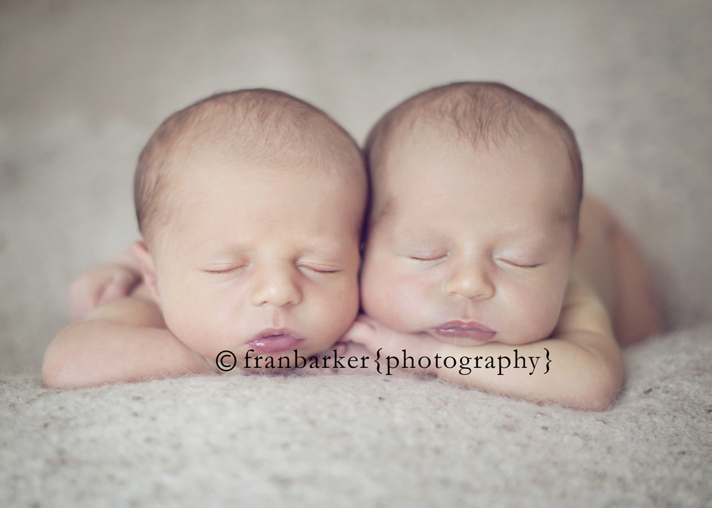 3 columbus ohio newborn twin photographer