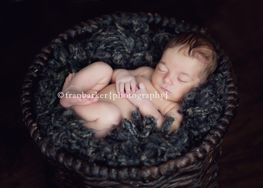 columbus best baby photography